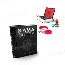 Libro kamasutra in latta - Per conservare i tuoi accessori