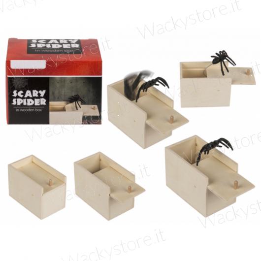 Scherzo scatola con ragno