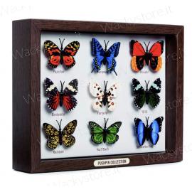 Set ferma appunti farfalle - Tante farfalle decorative formato punessa